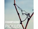 Champagne PIOLLOT